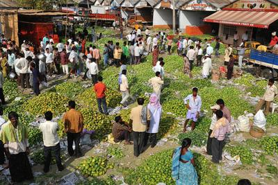 Indian traders auction mangoes at the Gaddiannaram Fruit Market on the outskirts of Hyderabad. Agriculture has experienced good growth over recent quarters. (Photo: AAP)