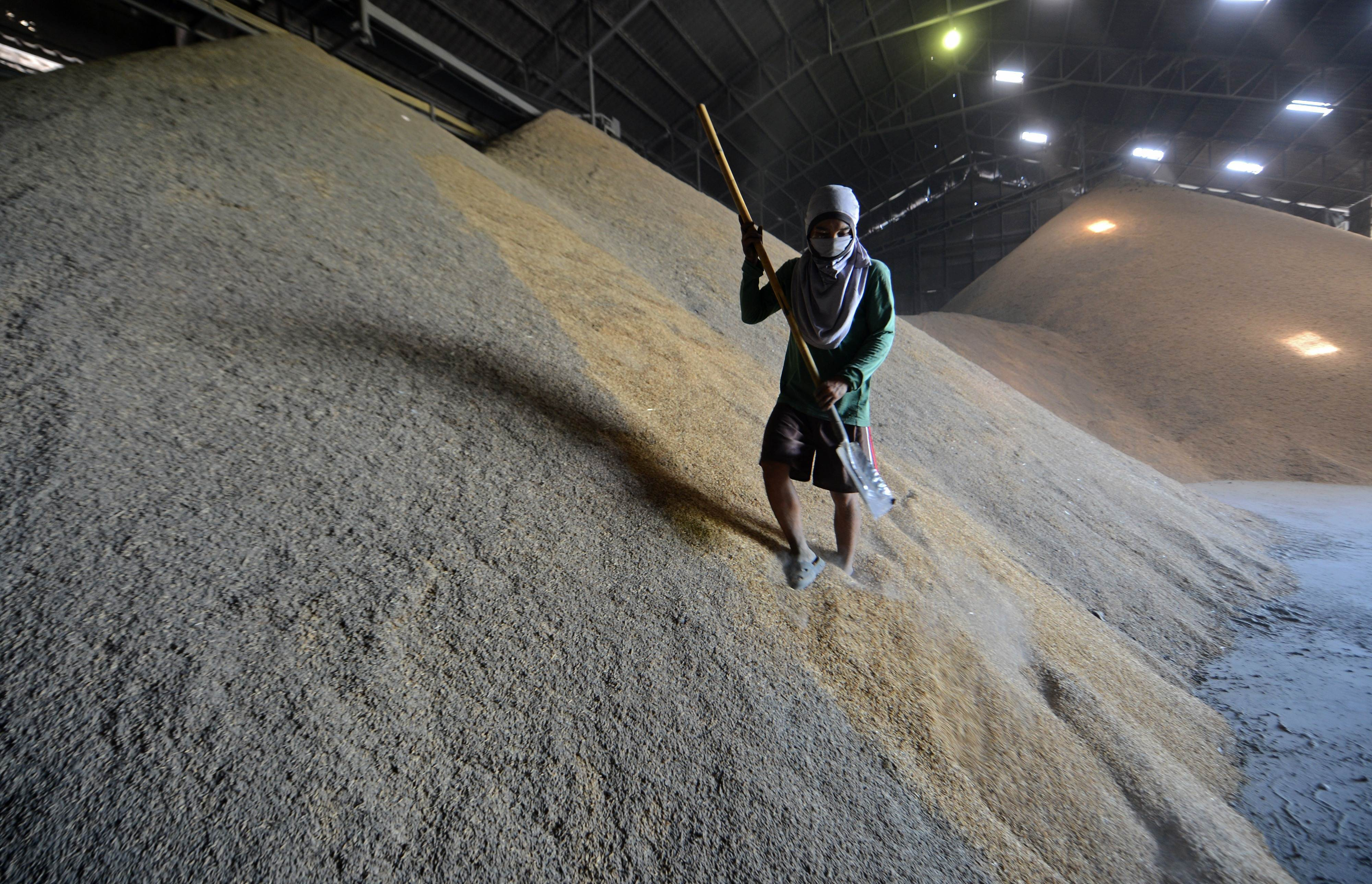 Feeding the multitudes: food security in Asia