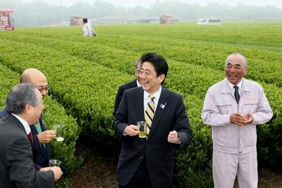 Prime Minister Shinzo Abe tours a tea plantation in  Kitsuski, Oita Prefecture on 18 May 2013. Abe recently pledged to revitalise the nation