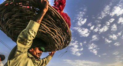 A labourer carries vegetables at the main vegetables and fruits market in Lahore, the provincial capital of Punjab province, Pakistan, 25 September 2014. (Photo: AAP).