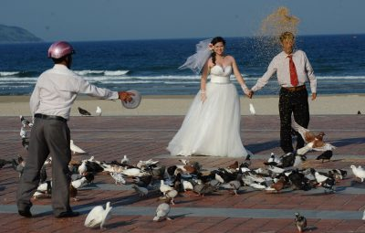 A young couple walking among pigeons as they pose for their wedding photographs on a beach in the central city of Danang, Vietnam (Photo: AAP).