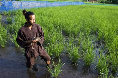 Japanese farmer Tepe Suzuki holds a duck in his organic heirloom rice field in the town of Isumi, Chiba province, east of Tokyo, Japan, 15 July 2008. (Photo: AAP)