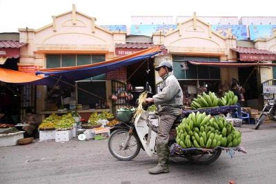 A man rides his motorbike which is loaded with bananas in Hanoi, Vietnam, 01 January 2016. (Photo AAP).