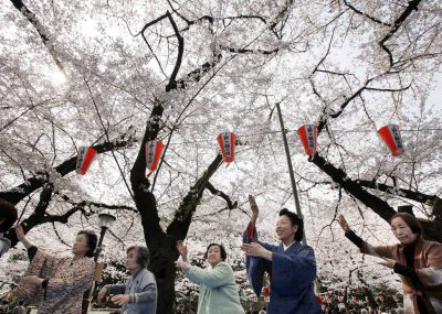Teacher Miya Edakawa, second from right, leads a group of elderly women in their dance routines at a cherry blossoms viewing party at Tokyo's Ueno Park. Dancing is believed to be beneficial to older people's welfare. Despite high education levels, women's skills have been under-used in Japan's workforce. (Photo: AAP).