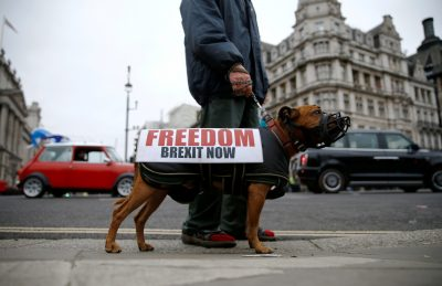 A man holds a dog on a leash with clothes on and a sign on Brexit day in London, Britain, 31 January 2020. (Photo: REUTERS/Henry Nicholls).
