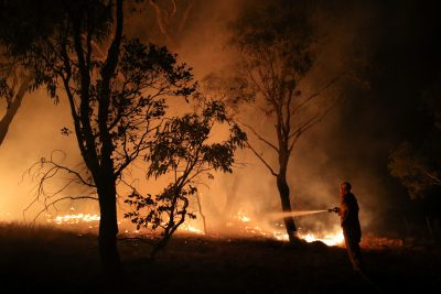 A firefighter from a local brigade works to extinguish flames after a bushfire burnt through the area in Bredbo, New South Wales, Australia, 2 February 2020 (Photo:  REUTERS/Loren Elliott).