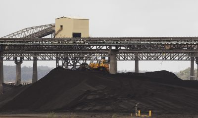 A tractor makes its way over a pile of coal at a coal port in Gladstone, Queensland (Photo: REUTERS/Daniel Munoz).