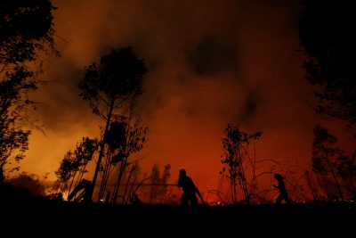 Firefighters try to extinguish forest fires at Sebangau National Park area in Palangka Raya, Central Kalimantan province, Indonesia, 14 September 2019 (Photo: Reuters/Willy Kurniawan.